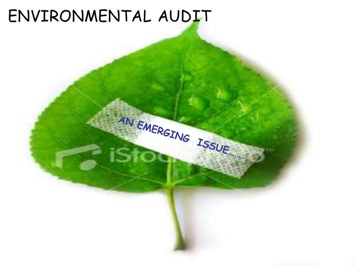 environmental-audit-1-728